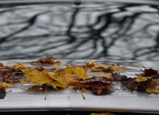 Jesienny przegląd Twojego samochodu
